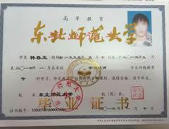 东北师范大学网络教育大专学历证书
